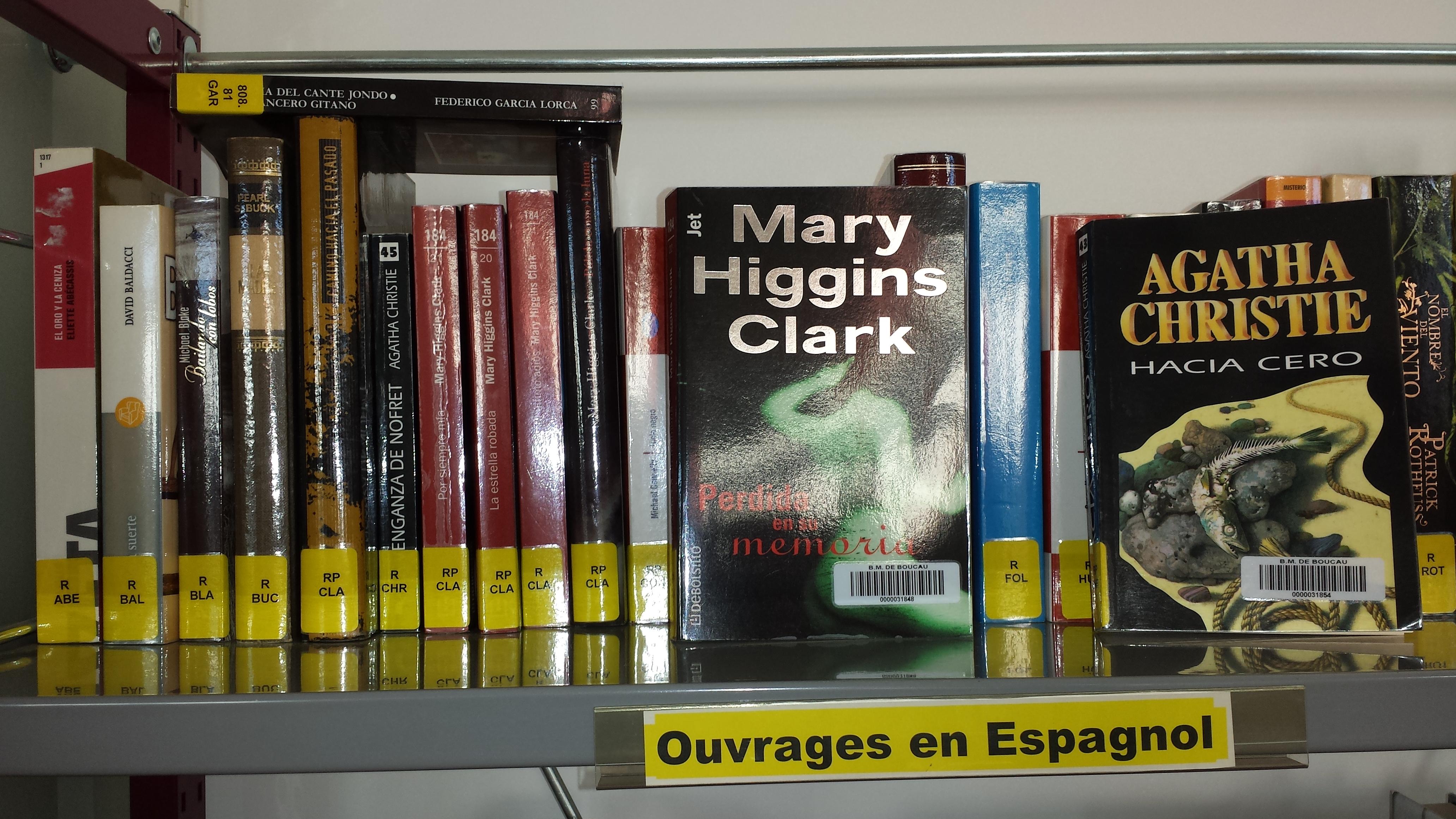 Livres en espagnol 3